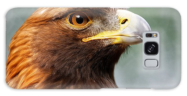 Golden Eagle Intensity Galaxy Case