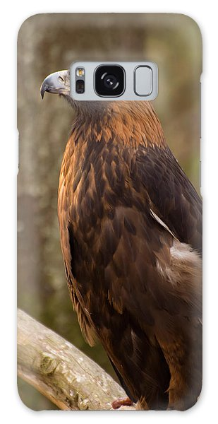 Golden Eagle Resting On A Branch Galaxy Case by Chris Flees