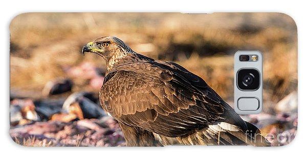Golden Eagle's Back Galaxy Case by Torbjorn Swenelius