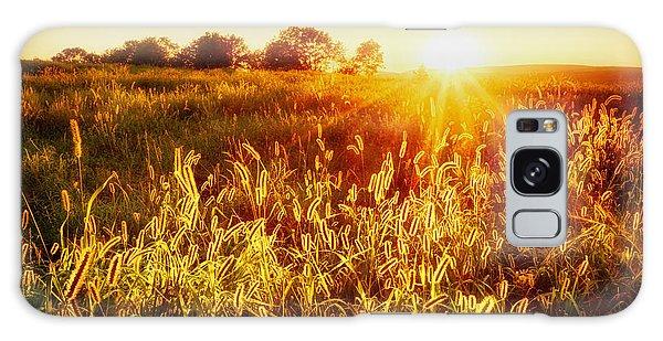 Golden Fields Galaxy Case by Mark Miller