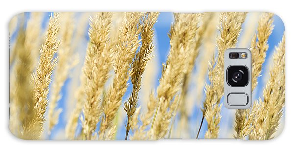 Galaxy Case featuring the photograph Golden Grains by Christi Kraft