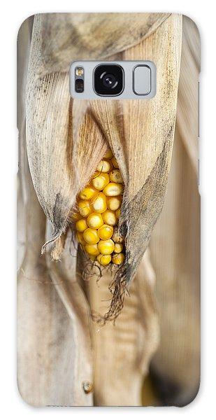 Golden Harvest Galaxy Case