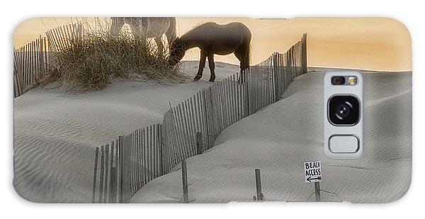 Golden Horses Galaxy Case