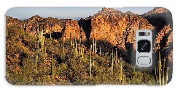 Galaxy Case featuring the photograph Golden Hour On Saguaro Hill  by Saija Lehtonen