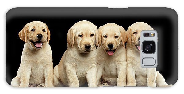 Golden Labrador Retriever Puppies Isolated On Black Background Galaxy Case
