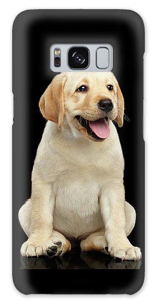 Golden Labrador Retriever Puppy Isolated On Black Background Galaxy Case