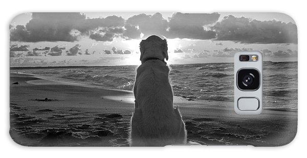 Golden Labrador Watching Sunset Galaxy Case