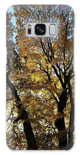 Golden Fall Galaxy Case