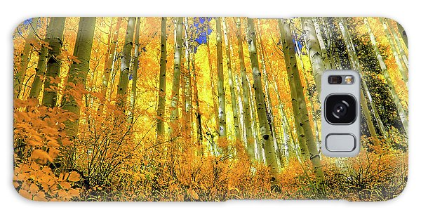 Galaxy Case featuring the photograph Golden Light Of The Aspens - Colorful Colorado - Aspen Trees by Jason Politte
