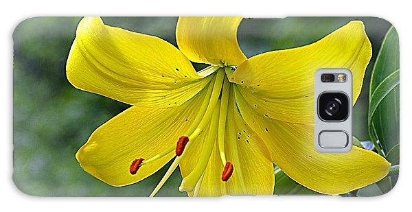 Golden Lily Galaxy Case by Karen McKenzie McAdoo