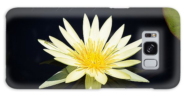 Golden Lily Galaxy Case