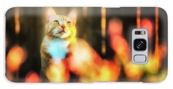Golden Orange Tabby Galaxy Case