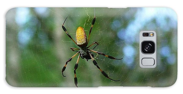 Golden Orb Weaver 1 Galaxy Case