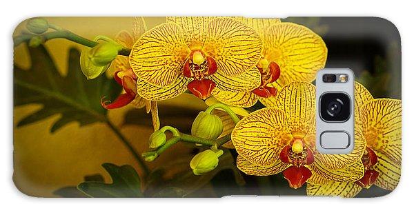 Golden Orchids Galaxy Case