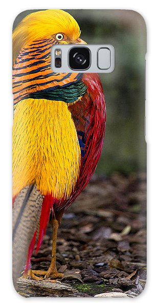 Golden Pheasant Galaxy Case