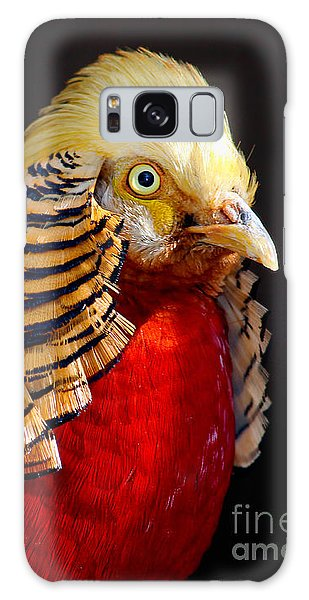 Golden Pheasant Galaxy Case by Martin Konopacki