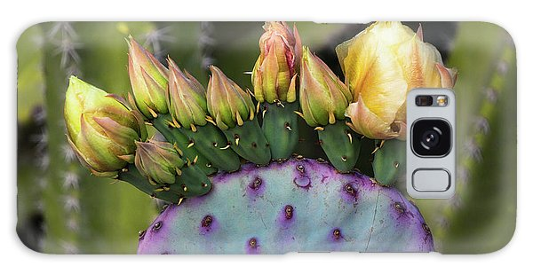 Galaxy Case featuring the photograph Golden Prickly Pear Buds  by Saija Lehtonen