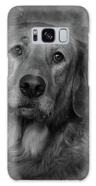 Golden Retriever In Black And White Galaxy Case by Greg Mimbs