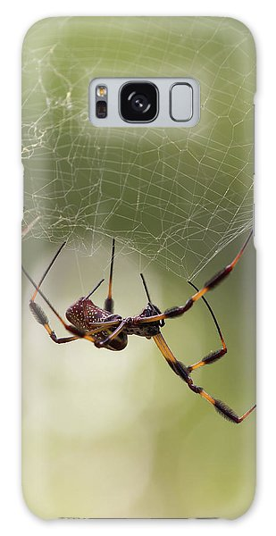 Golden-silk Spider Galaxy Case