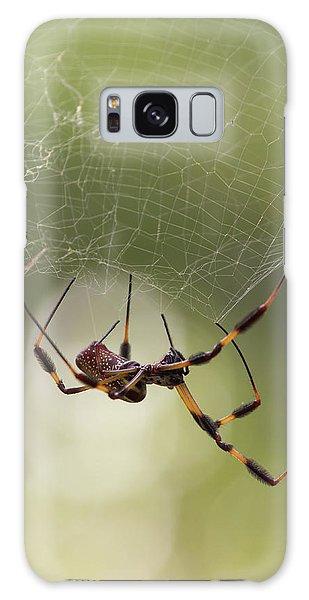 Golden-silk Spider Galaxy Case