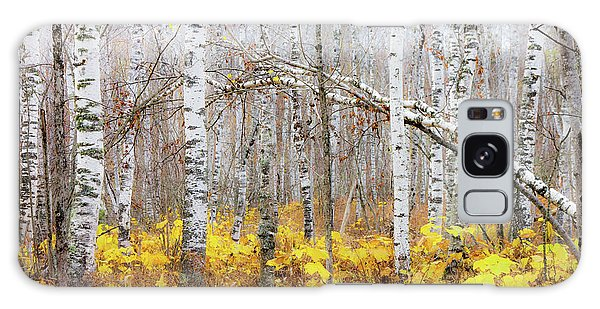 Boreal Forest Galaxy Case - Golden Slumbers by Mary Amerman