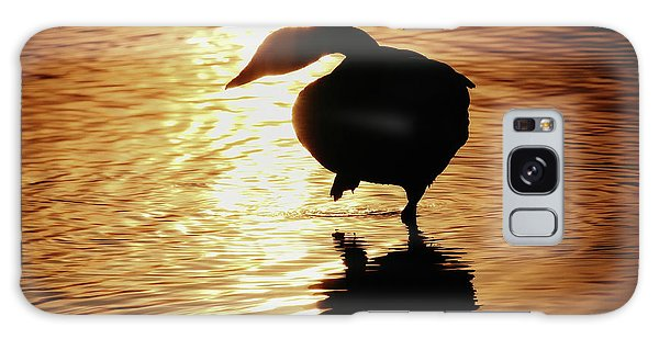 Golden Swan Galaxy Case
