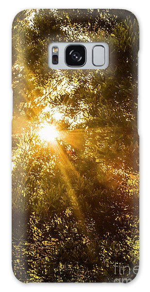 Divine Galaxy Case - Golden Treetops by Jorgo Photography - Wall Art Gallery