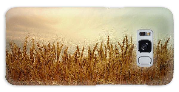 Golden Wheat Galaxy Case by Kae Cheatham