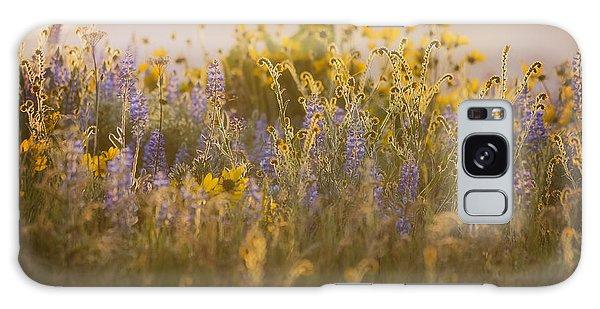 Golden Wildflowers Galaxy Case