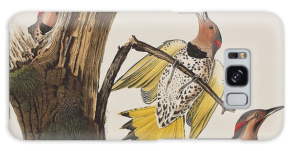 Golden-winged Woodpecker Galaxy Case