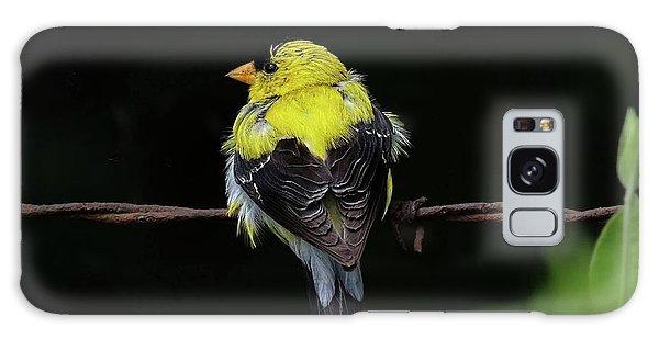 Goldfinch Galaxy Case by Ronda Ryan