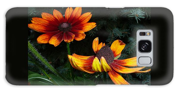 Good Night Susan - Botanical Galaxy Case