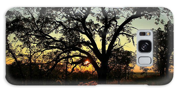 Galaxy Case featuring the photograph Good Night Tree by Viviana  Nadowski