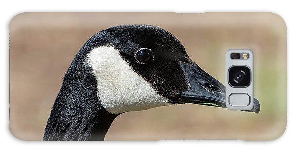 Goose Eye Galaxy Case