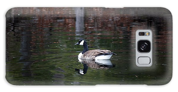 Goose On A Pond Galaxy Case