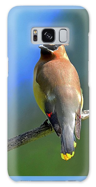 Gorgeous Cedar Waxwing Galaxy Case