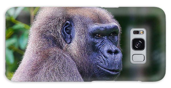 Galaxy Case featuring the photograph Gorilla  by Dart and Suze Humeston