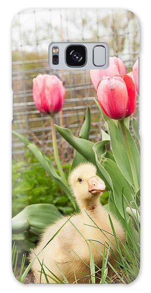 Gosling Galaxy Case - Gosling In Tulip Garden by Elizabeth Gray