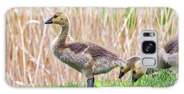 Gosling Galaxy Case - Goslings 3 - Leader Of The Pack by Steve Harrington