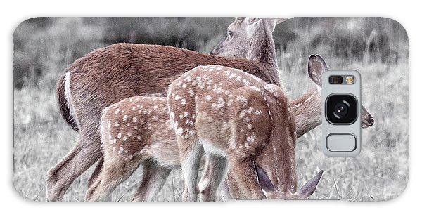 White-tailed Deer Galaxy Case - Humor Got Some Doe And Two Bucks by Betsy Knapp
