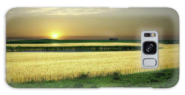 Grain Field Galaxy Case