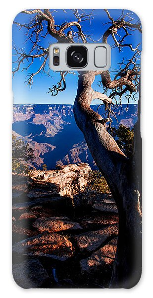 Grand Canyon 27 Galaxy Case by Donna Corless