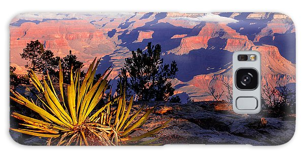 Grand Canyon 31 Galaxy Case by Donna Corless