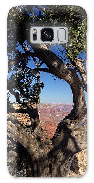 Grand Canyon No. 6 Galaxy Case