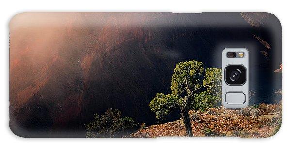 Grand Canyon Juniper Galaxy Case