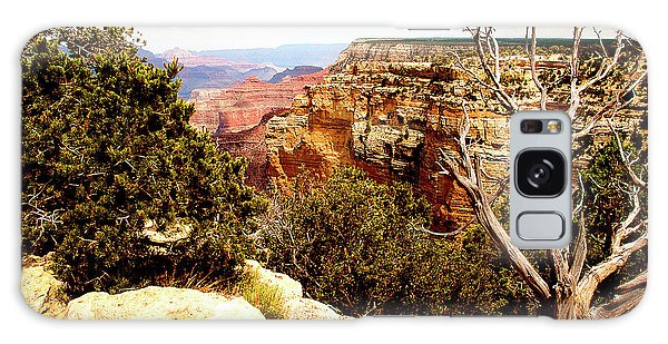 Grand Canyon National Park, Arizona Galaxy Case