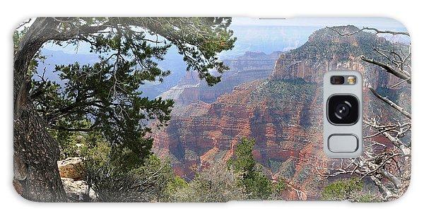 Grand Canyon North Rim - Through The Trees Galaxy Case