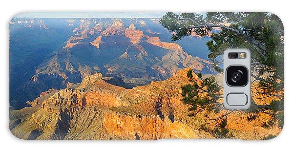 Grand Canyon South Rim - Pine At Right Galaxy Case