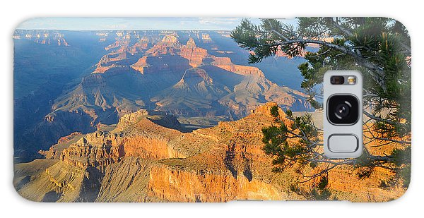 Grand Canyon South Rim - Pine At Right Galaxy Case