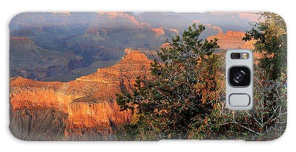 Grand Canyon South Rim - Red Berry Bush Along Path Galaxy Case